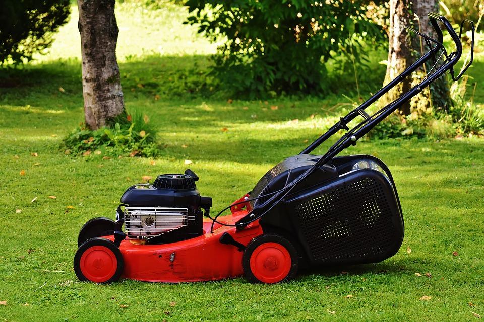 Quels sont les outils incontournables pour un jardinier ?